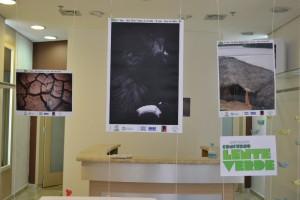 Exposição Lente Verde no Espaço Juntô - Foto: Sandra Ribeiro